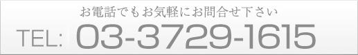 03-3729-1615